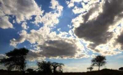 Best African Safari Views
