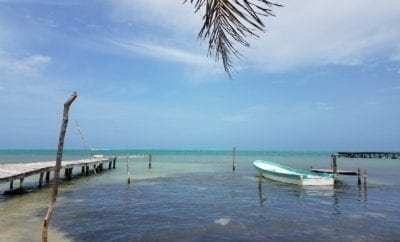 best food bars, Caye Caulker Spiny Lobster