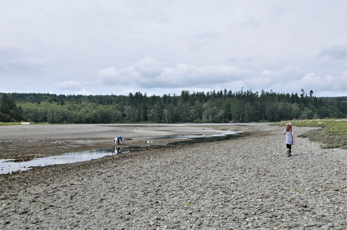 The Perfect Day Trip: Clamming in Hood Canal, WA by Helicopter